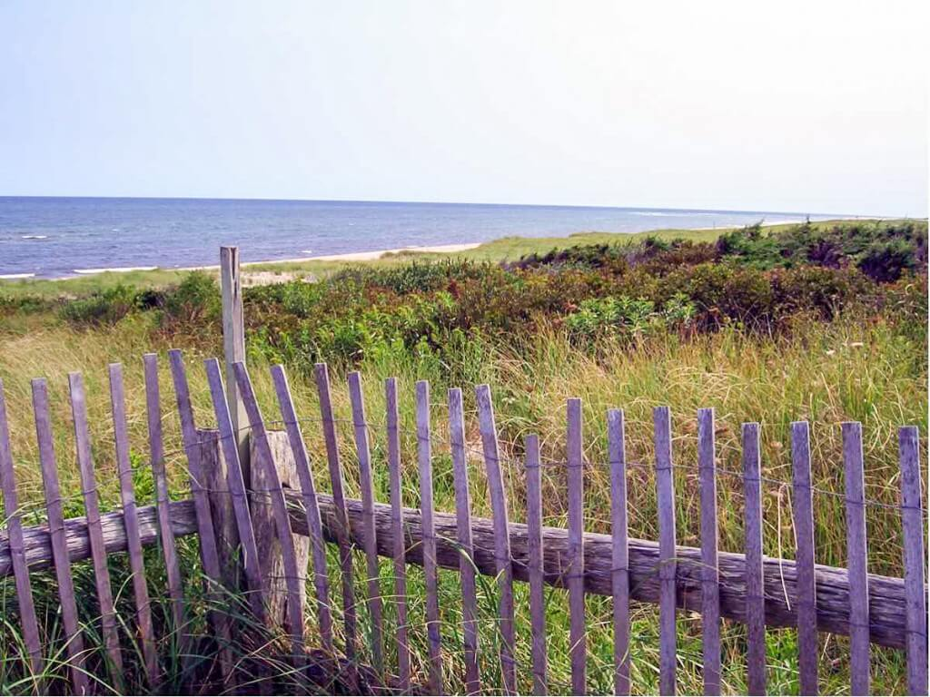 Coast Guard Beach - Where to find Cape Cod accommodation near the beach