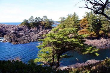 Am Wild Pacific Trail bei Ucluelet auf Vancouver Island