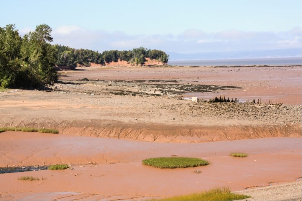 Die Bay of Fundy bei Tennycape