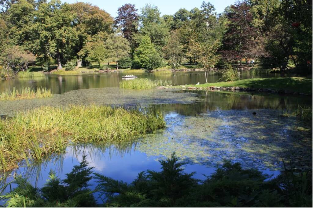 Teich im Public Garden in Halifax