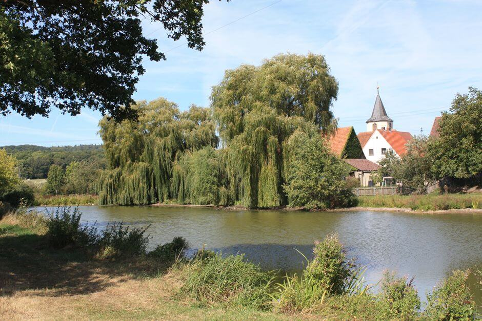 In the Franconian wine country hike to the village pond in Birklingen