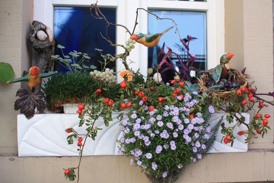 Franconian wine country; Grapes as window decoration, seen in Iphofen