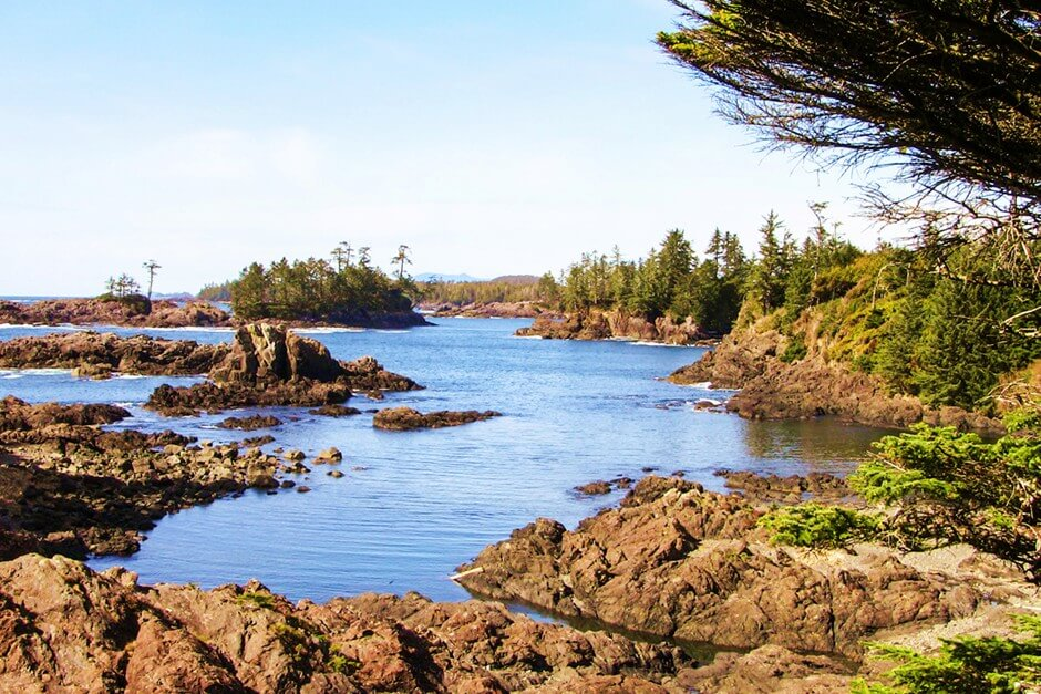 Hiking on the Wild Pacific Trail Vancouver Island