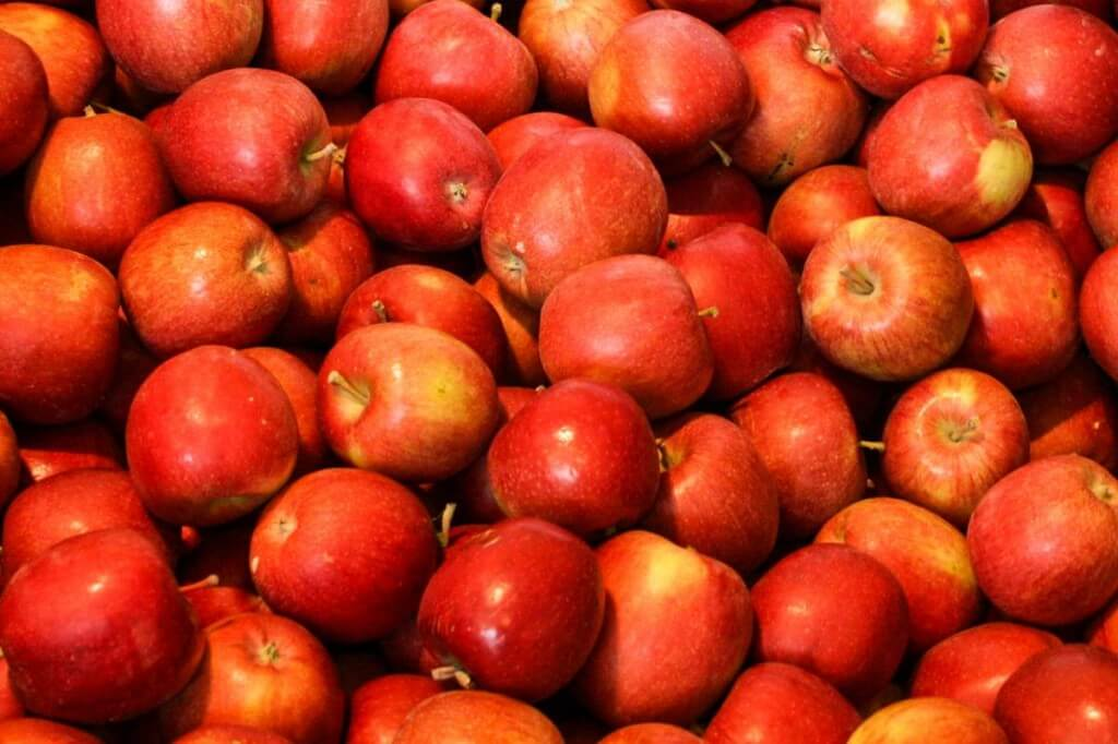 Best cider from ancient apple varieties