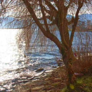 Wintertag am Traunsee