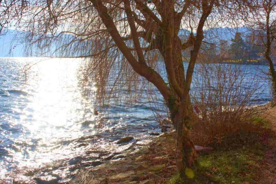 Wintertag am Traunsee einem der Salzkammergut Orte