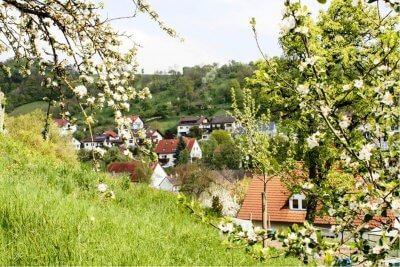Spring bloom in the Jagsttal