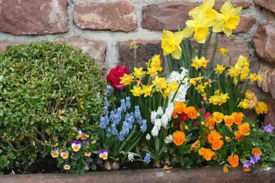Hübscher Blumenschmuck in Bömers Mosellandhotel in Alf