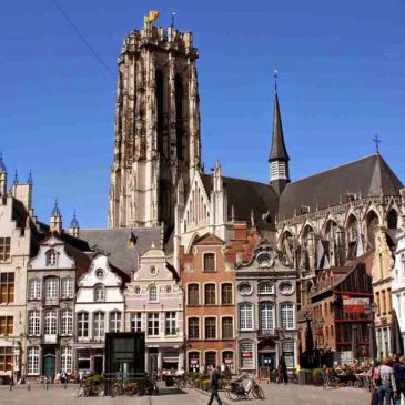 Grote Markt Sint Rombouts Kathedrale