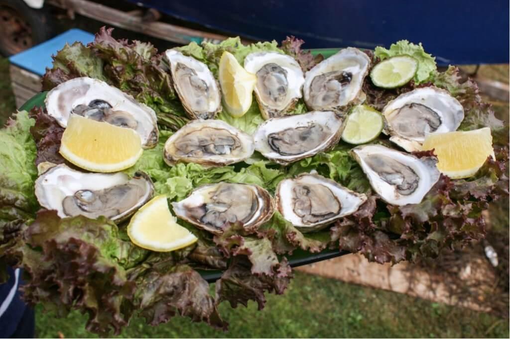 Frische Austern Muscheln mit Zitrone
