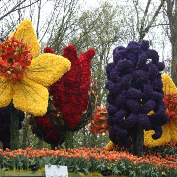 The car of Keukenhof