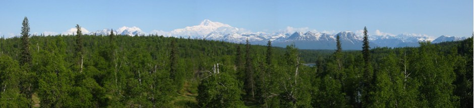 Mt Denali Panorama Copyright Kyle Adams
