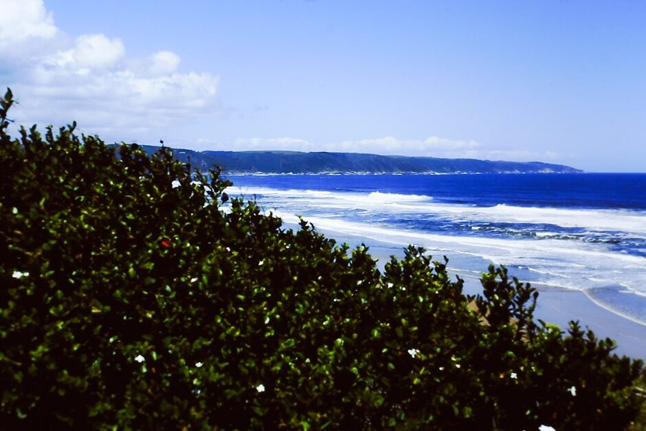View of the beach of Wilderness