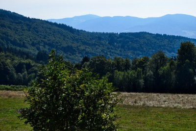 Parking with a view of the Bavarian Forest