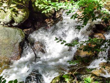 Wanderung durchs Pesenbachtal