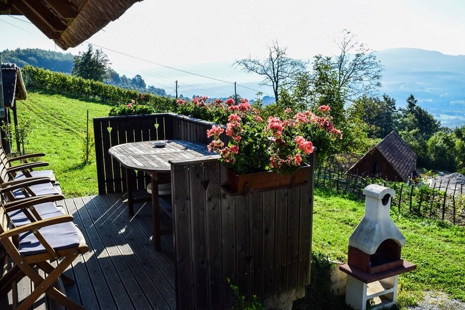 Wine Country View - Slovenia Destinations for wine lovers
