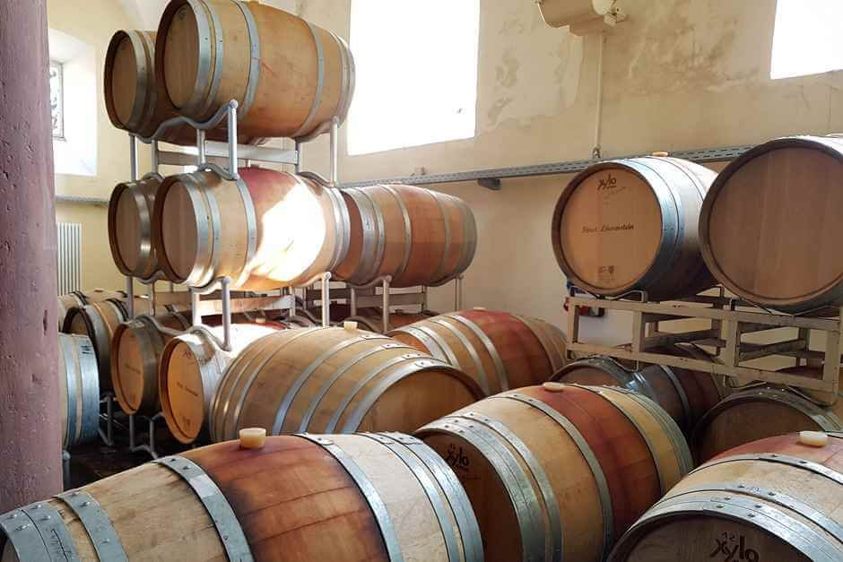 The red wines of Schloss Löwenstein mature in these barrels