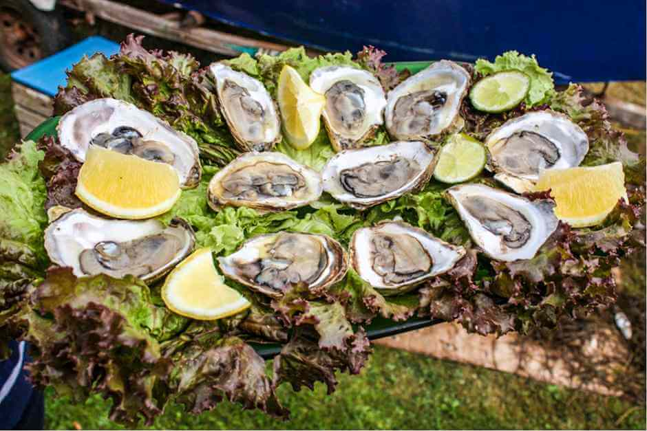 Fresh oysters with lemon - where to eat in New York