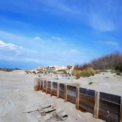 Dunes and cottages on the beach