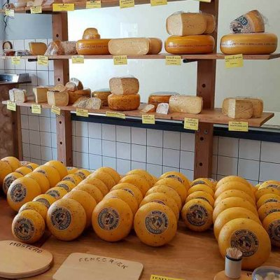 The great cheeses of Texel - Texel Tips for Foodies