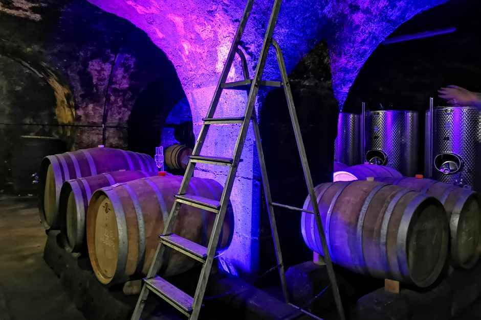 The wines ripen in the barrels