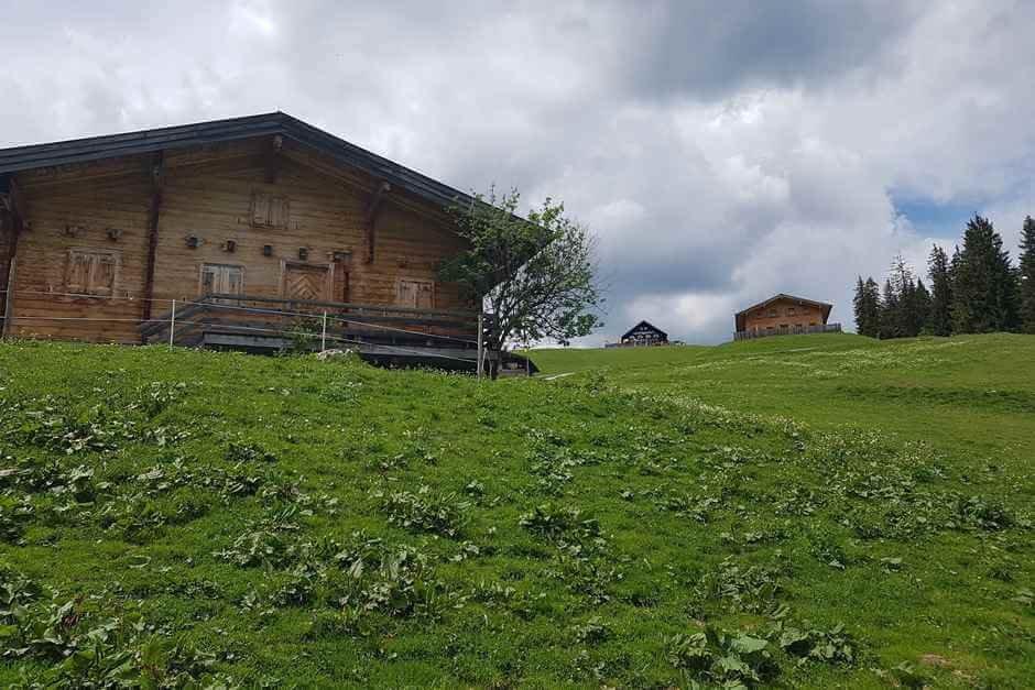 Loferer Alm Hütten am steilen Berg