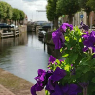 On the canals of Hasselt