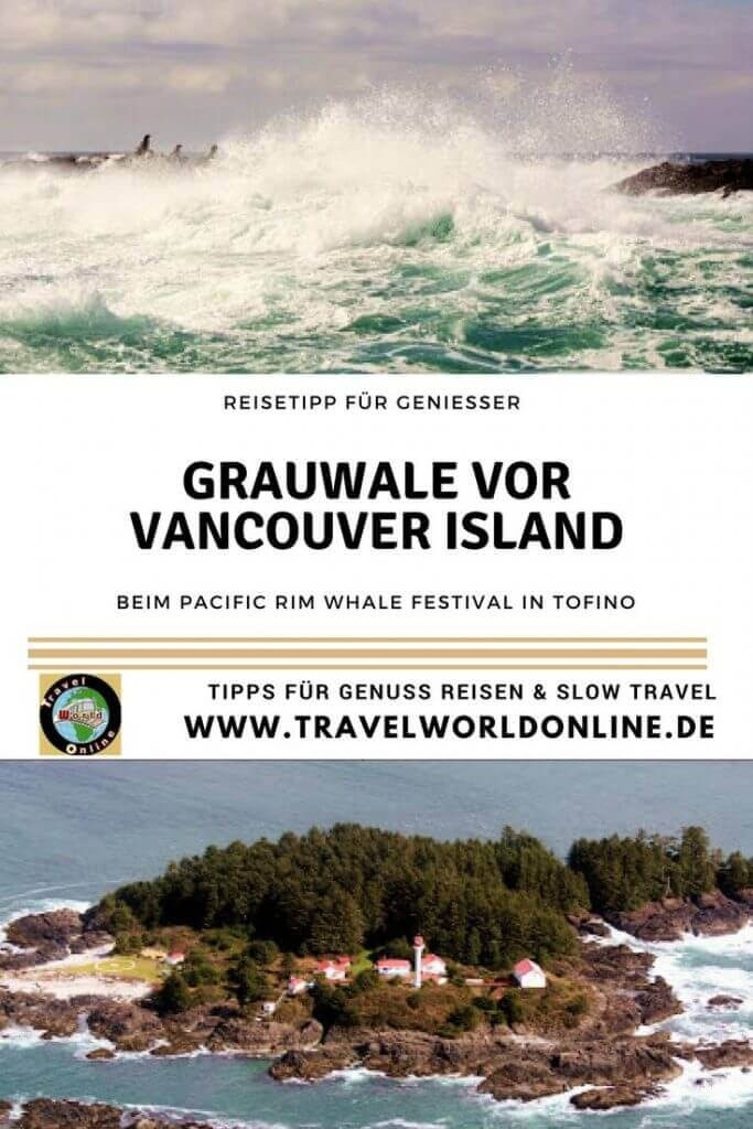 Gray whales off Vancouver Island