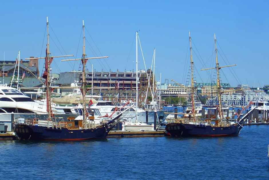 Whale watching in Massachusetts is also offered in the port of Boston
