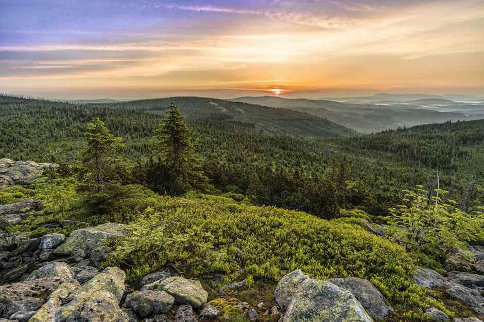 Wellness hotel in the Bavarian Forest