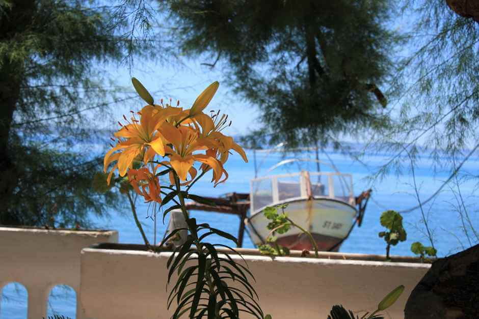 Island hopping on the Croatia islands