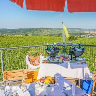 Picnic accessories in the vineyard