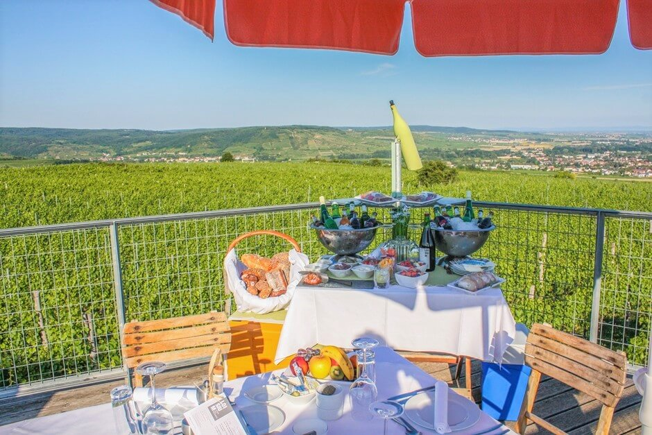 Picnic accessories in the vineyard - picnic blanket, picnic bag, picnic basket and picnic grill