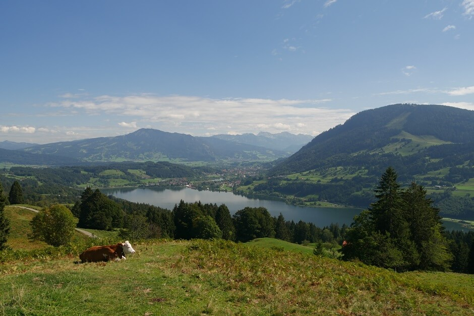 Alpseeblick Deep in the Allgäu picnic areas in Germany