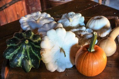 Fall decoration for outdoors in Canada