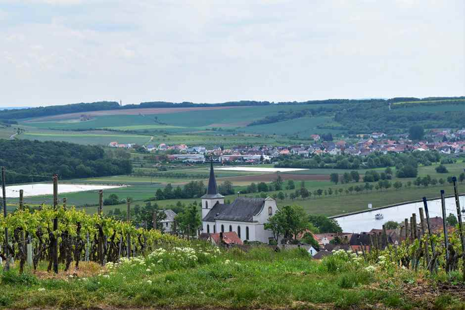 Wipfeld in the Franconian wine region
