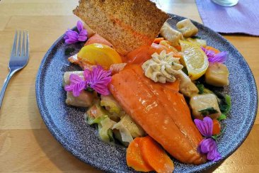 Salmon trout and pikeperch fillet